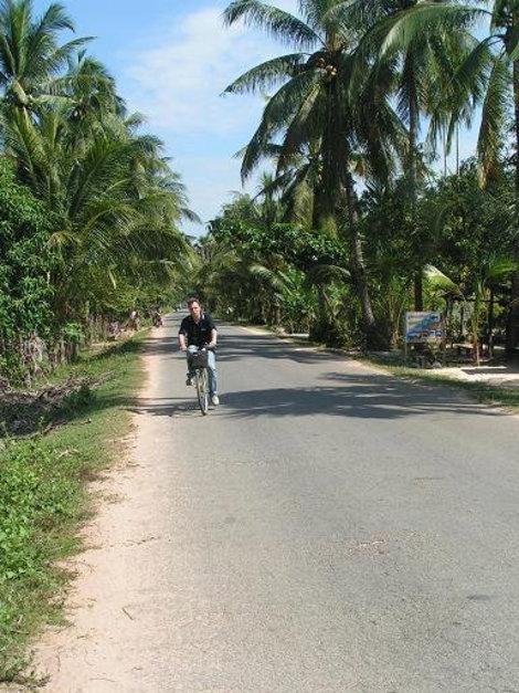 На велосипеде среди пальм