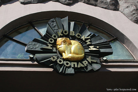 Логотип зоопарка — манул