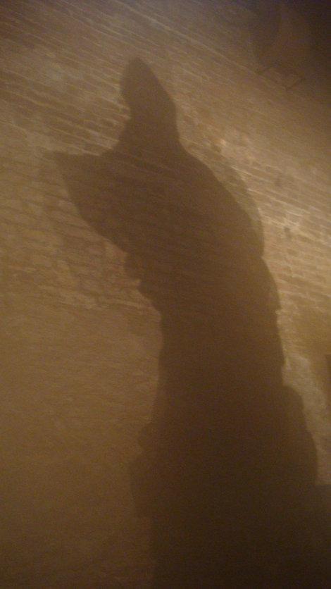 Таинственные тени