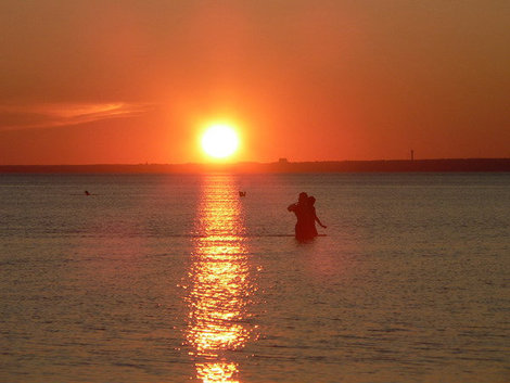 Мелкий Финский залив в Курорте.