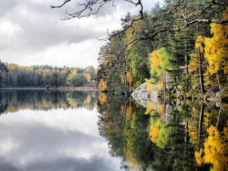 Озеро неподалеку от Приозерска.