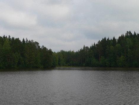 Озеро в направлении Ладоги.
