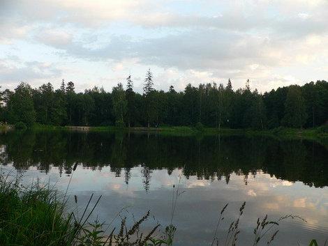 Озеро в Шуваловском парке.