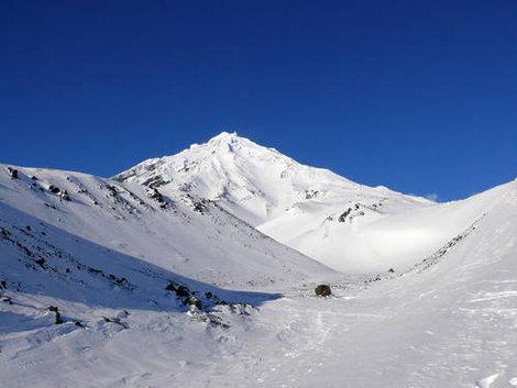 зима тур приют Авачи, вид на Корякский вулкан