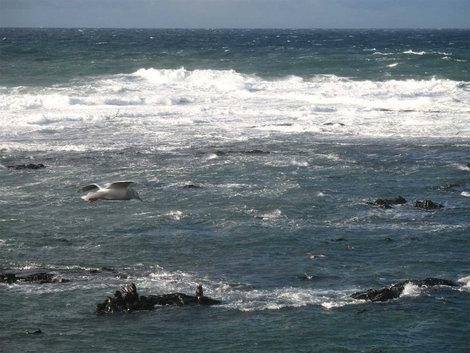 Ветер на океане.