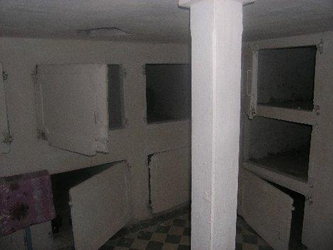 Склеп усыпальницы Ганских