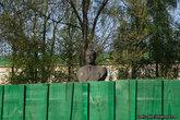 Памятник Громыко
