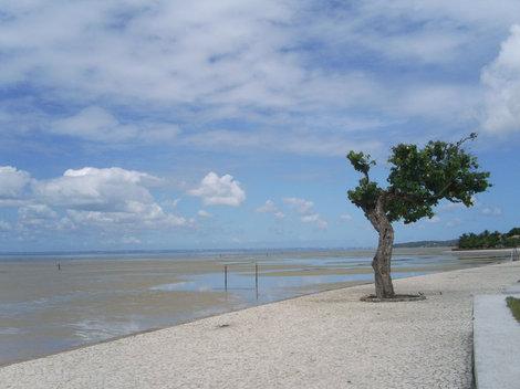 Ещё один пляж ост. Итапарика, видно воду на песке