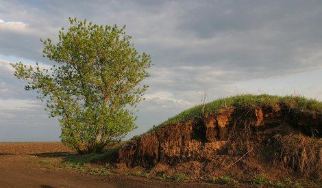 Татарский вал в разрезе