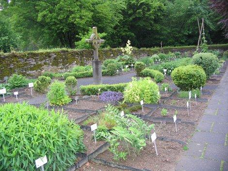 Аптечный огород  монахов
