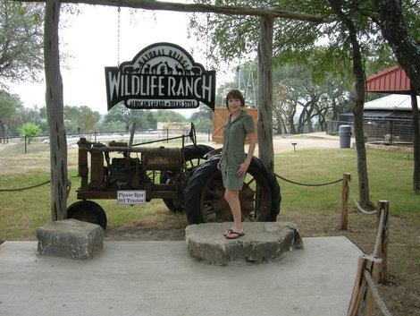 На территории ранчо, у музея.