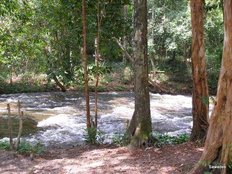 Река тысячи лингамов