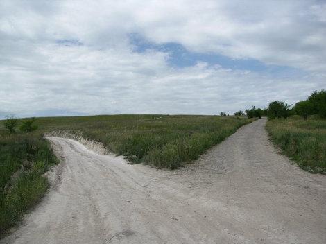 Две дороги — серая и белая