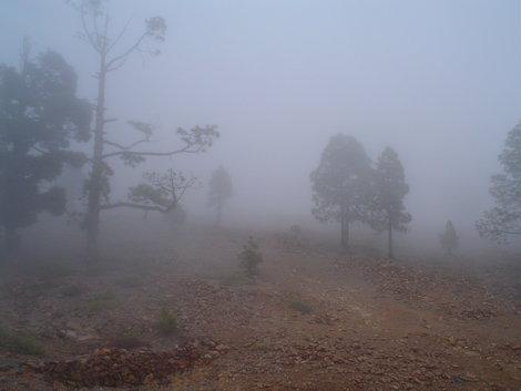 Вам кажется, что это туман? Нет, это самые настоящие тучи!