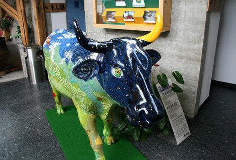 Корова Сериз (Вишенка) — экскурсовод