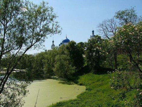 49. Свято-Боголюбский женский монастырь издали