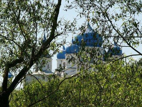 50. Свято-Боголюбский женский монастырь издали