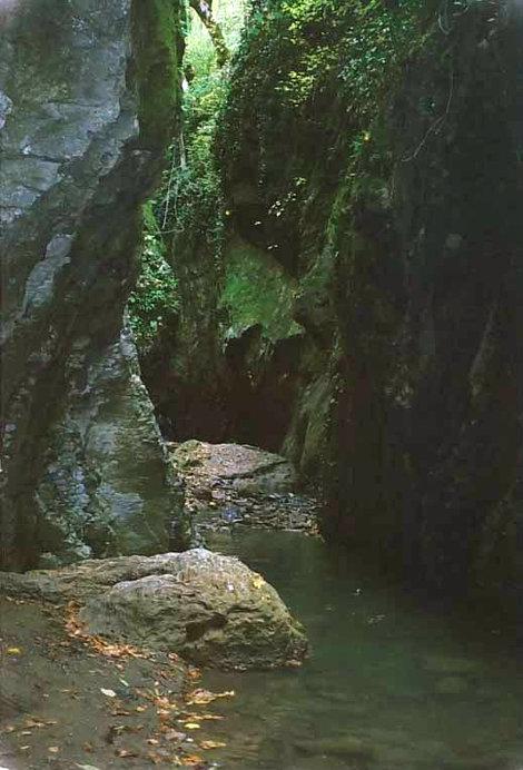 Ущелье реки Свирь