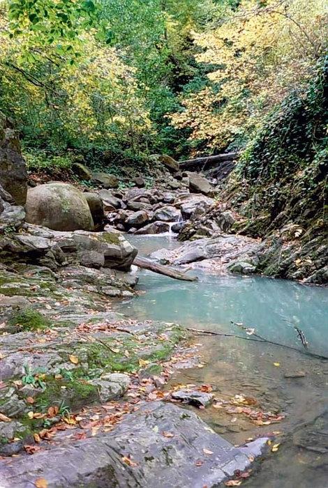 Река Свирь выше второго водопада