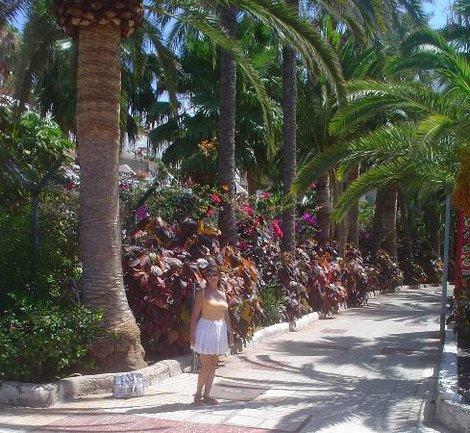 Прогулка по Коста Адельхе