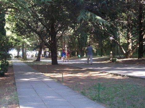 Партенит. Парк военного санатория