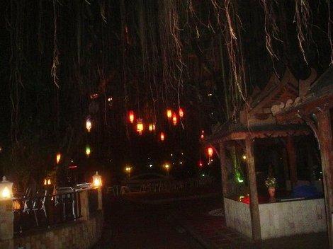 Фонарики на деревьях в отеле