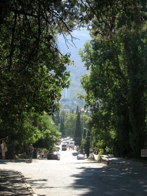 Дорога в Патените