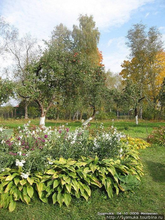 путь чеховский сад фото сообщества московская область